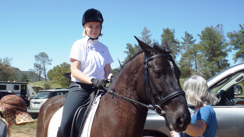 how to ride intro b dressage test
