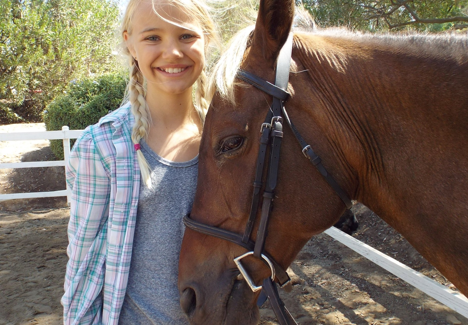 2017 Equestrian Summer Camps San Diego Mega Arte Riding